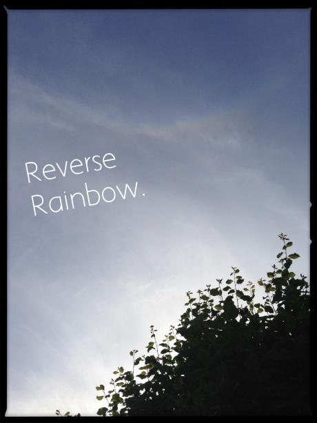 20130606-212415.jpg